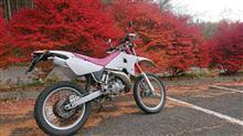 bullrider☆maxさんのDT200WR