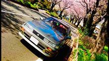 magarinhiroさんの愛車:トヨタ ソアラ