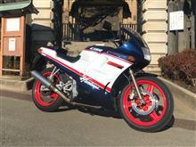 tu_riderさんの愛車:ホンダ CBR250R MC17