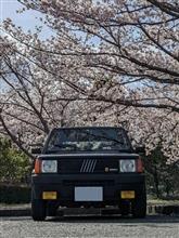 U-san0310さんの愛車:フィアット パンダ