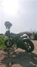 イエムラさんのストリートマジックII50 メイン画像