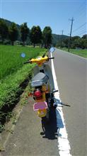 KANDA(神田)さんのスーパーカブ タイプX125 リア画像