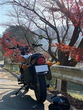 ◎マコやん◎さんの900スーパーフォー リア画像