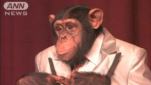 パン 君 動物園 死亡 志村 「パンくん」で有名なあの動物園でクマ惨殺事件が起きていた|NEWSポストセブン
