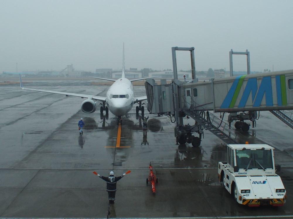 宮崎空港 ANA NH0342 B737-800①