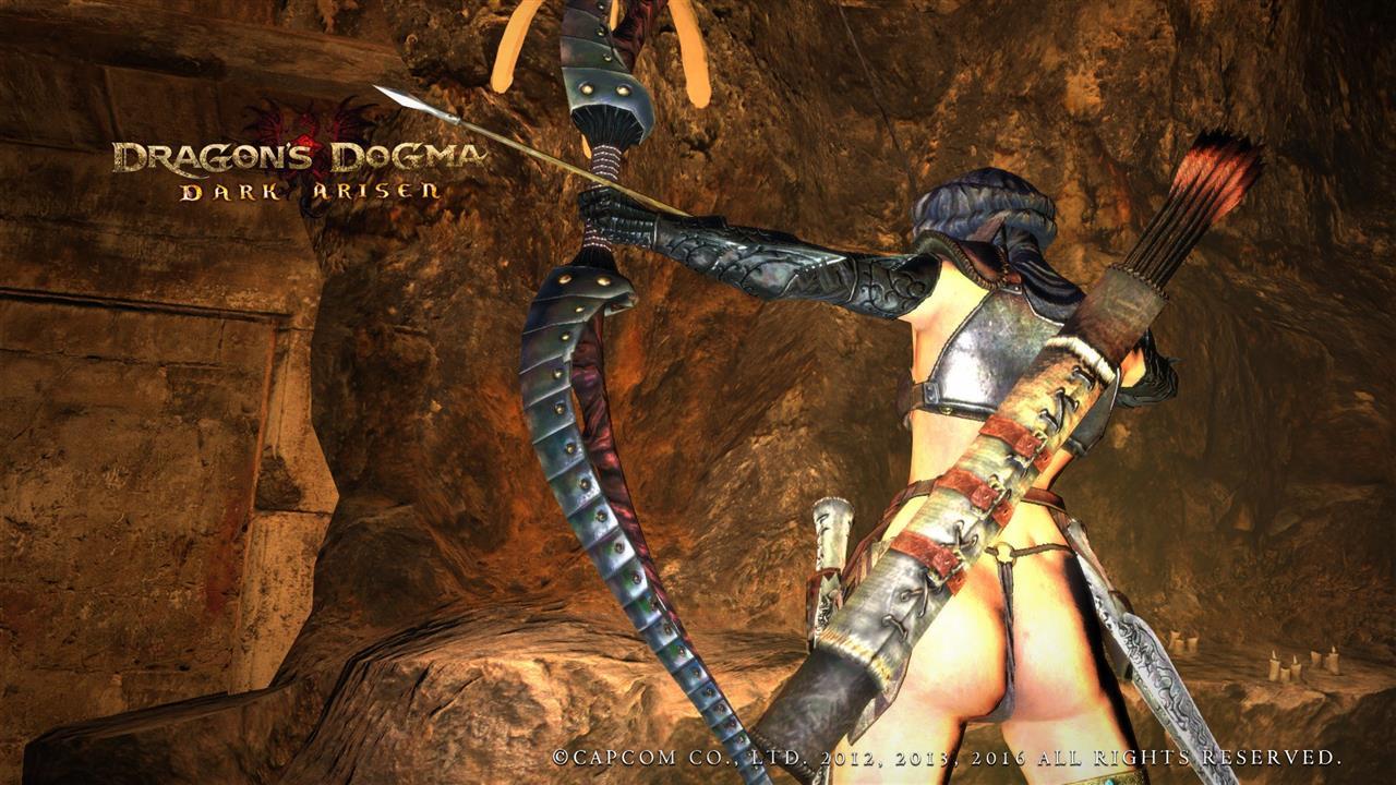 ドラゴンズ ドグマ mod