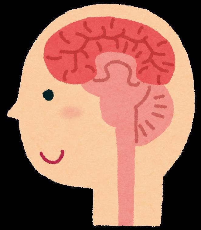 「可逆性脳血管攣縮症候群 通称「RCVS」」濱TOPのブログ ...