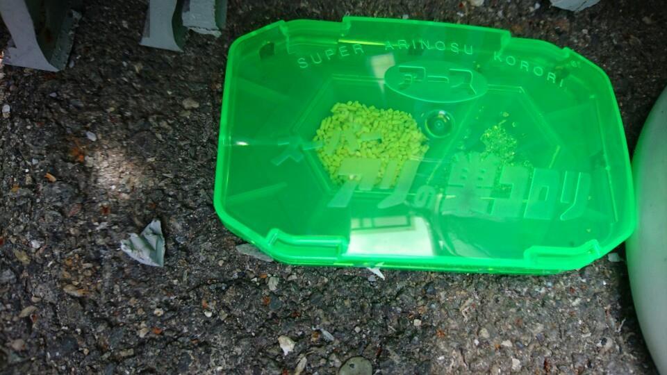 巣 コロリ の 効果 アリ スーパーアリの巣コロリ効果なし!