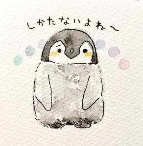 るるてあさんより肯定ペンギン