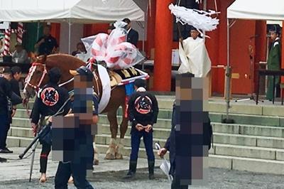 藤崎宮のお祭りで馬がお尻むけちゃってる。