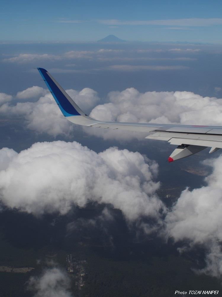 宮崎空港 ANA602 A321⑤