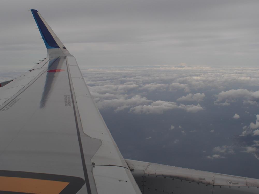 宮崎空港 ANA602 A321 富士山