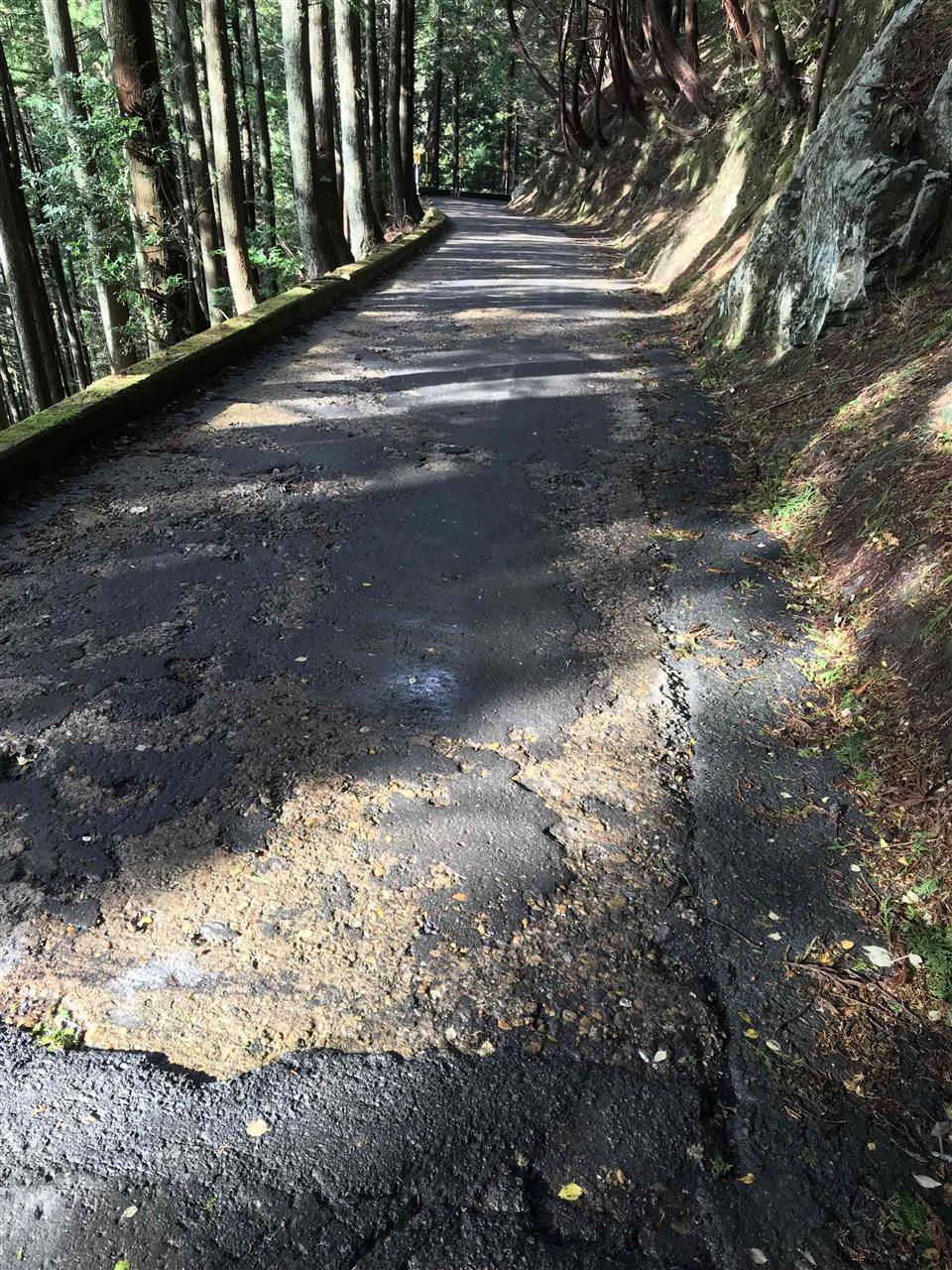 ロードバイクで前ヶ畑峠を征する。