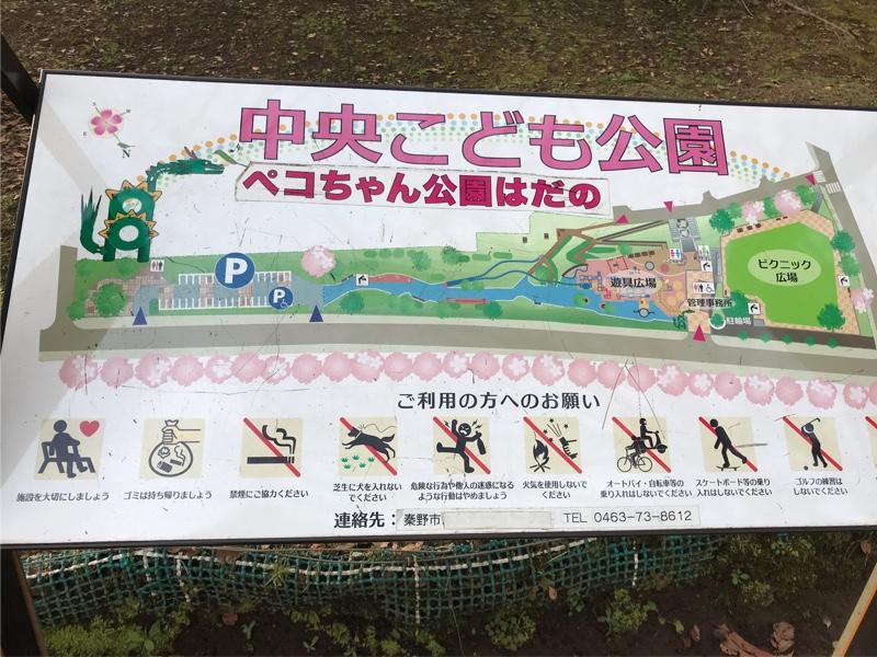 ちゃん 公園 ペコ