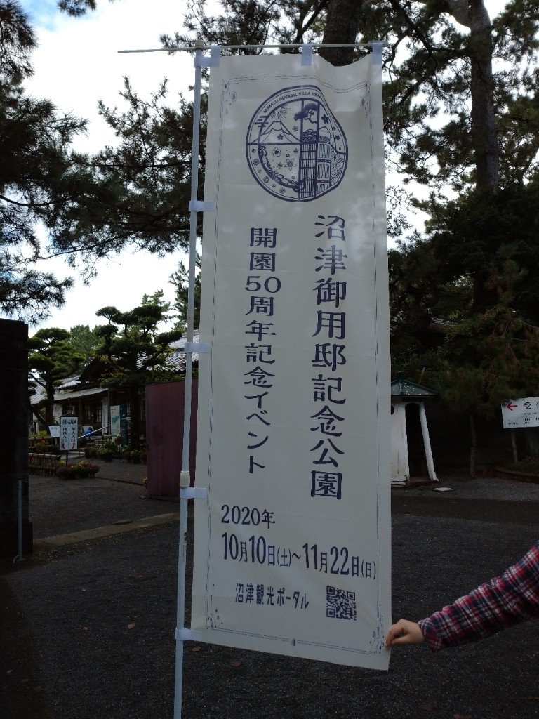 沼津 ハンパ